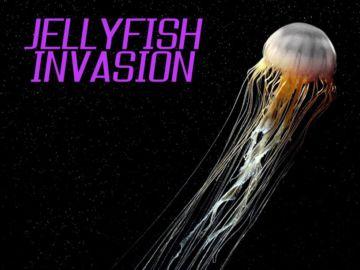 Jellyfish image 2