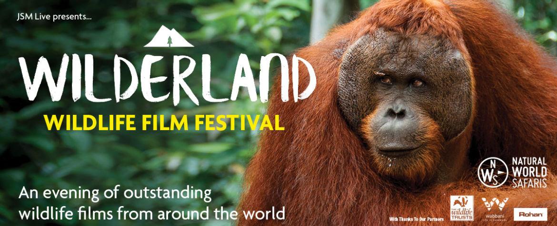 Wilderland web image